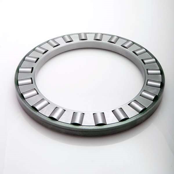 Image of cylindrical roller bearings that can accommodate different applications